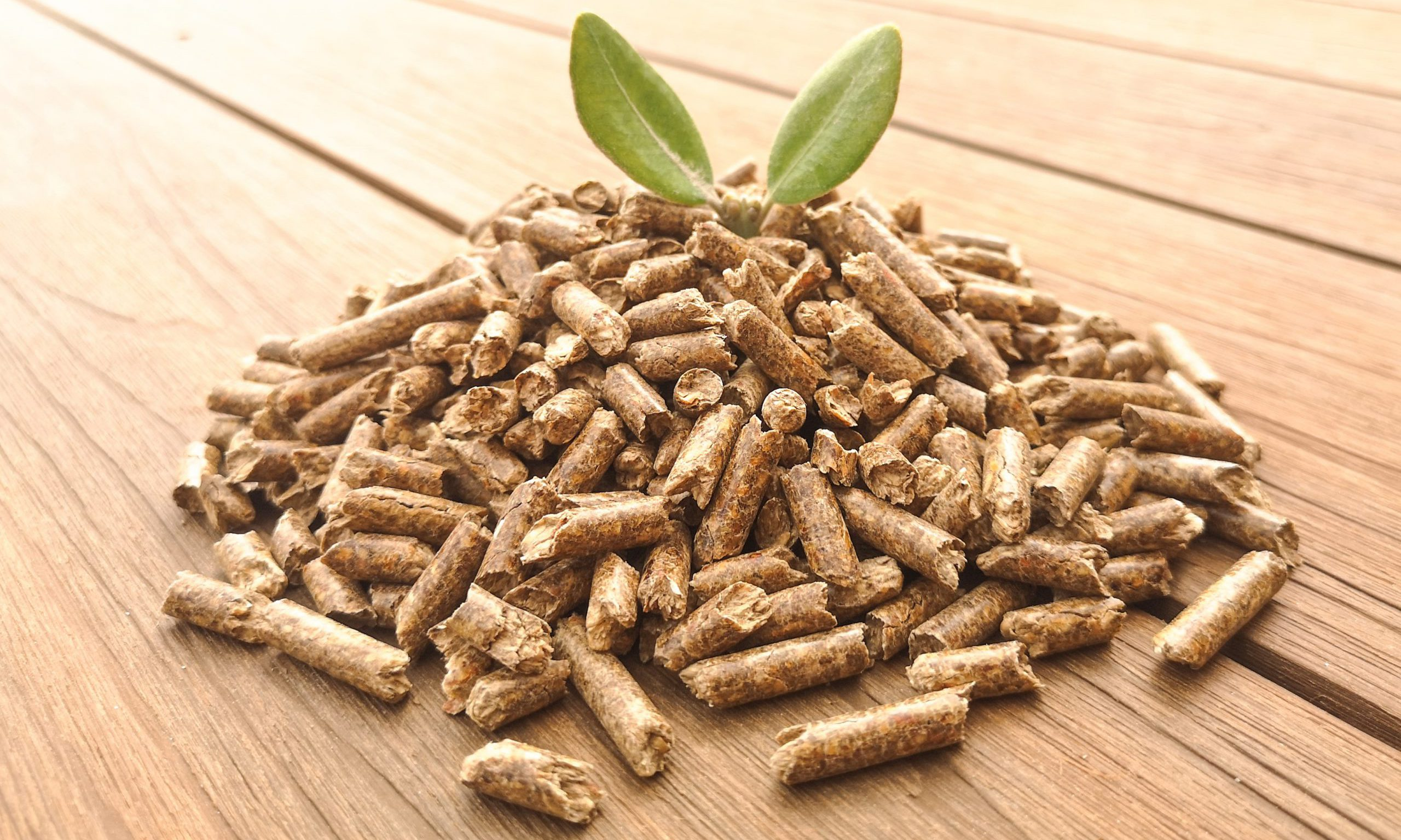 What wood pellet is the best quality?